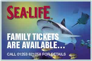 blackpool-aquarium-sea-life-centre